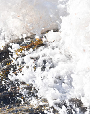 Photo of Sea Rocks B on NaturalCrooksDotCom