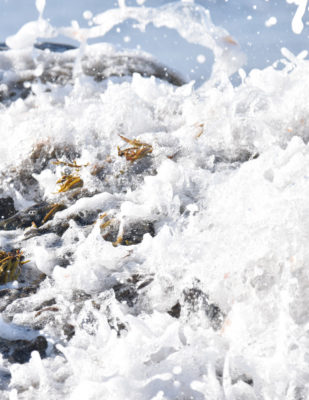 Photo of Sea Rocks C on NaturalCrooksDotCom